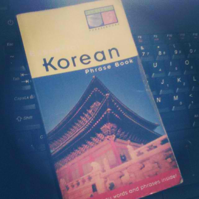 My beat-up, it's-been-so-long-since-I've-used-it Korean language book.